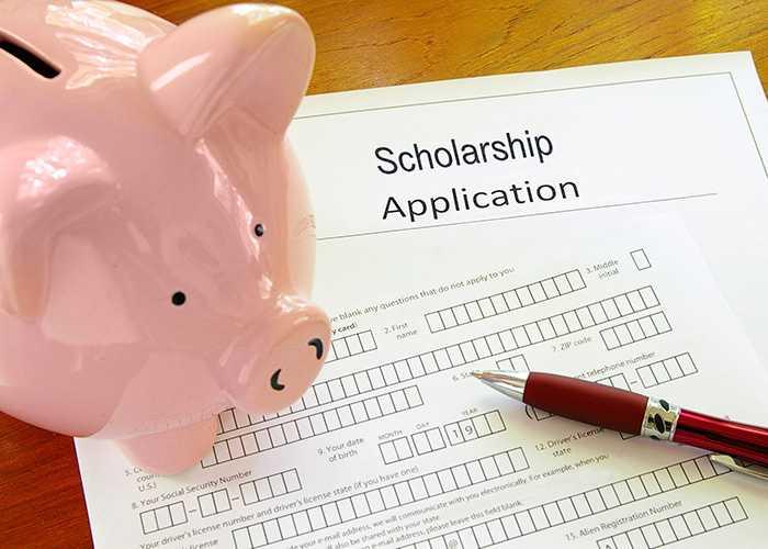 Scholarship Application - Spartan College